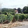 88 - 2012 - 07- fabuleux préambule des funambules en champagne