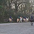 La Balade du Jambon - Balade à cheval dans le mortainais (21)