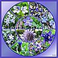 Fleurs bleues digiscrap