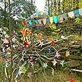 buisson d'étoiles devant la yourte yurtao