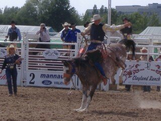 Rodeo and stuff 6