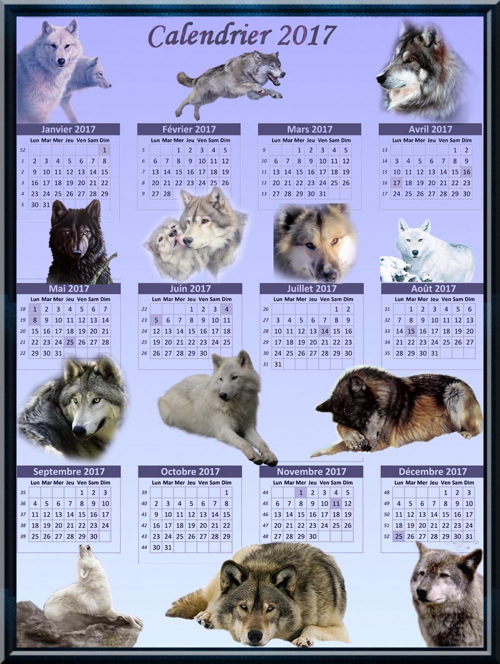 Calendrier 2017 loups création minouchapassion