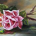 Roses de Virginie