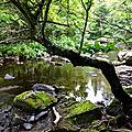 Rivière Mo