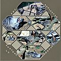 SCRAPFLOWERS79395654_o