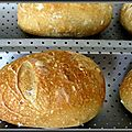 Petits pains aux céréales sur poolish