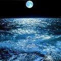 La lune dans le caniveau