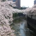 Edogawabashi_2-3