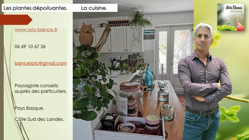 Paysagiste-Anglet-Paysagiste-Pays-Basque-Paysagiste-conseils-aux-paticuliers-Loic-BANCE- plantes-depolluantes-cuisine