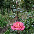 1 - Rencontre entre jardiniers le 26 sept. 2015