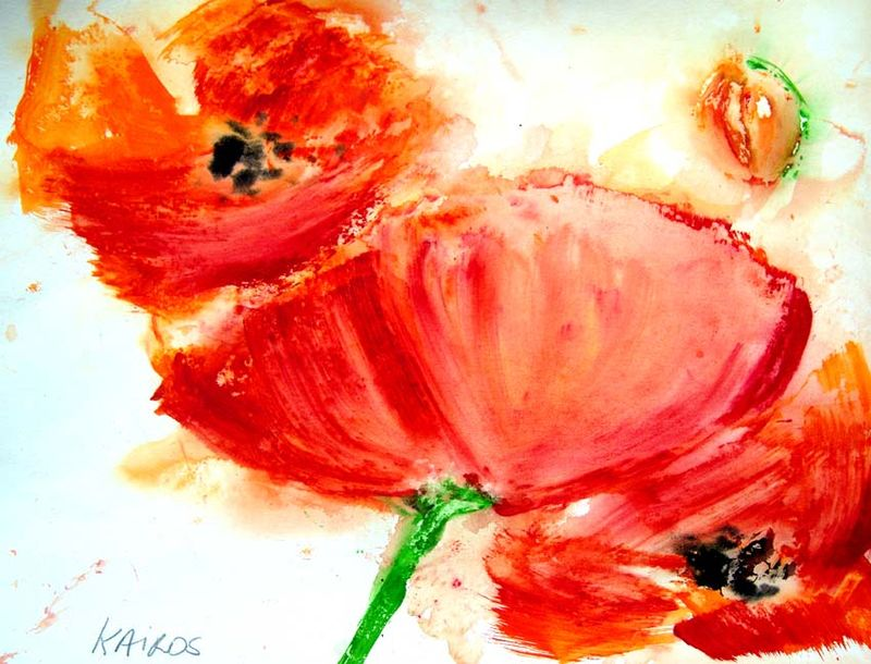 Coquelicots paysages