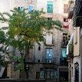 Barcelone - Barri Gotic_5048