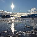 Le Spitzberg à la voile au milieu des glaces, des morses et des ours