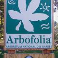 ARBORETUM DES BARRES (45)