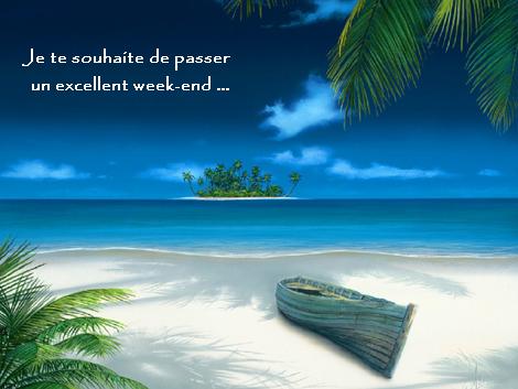 excellent week-end 1 plage ile et palmiers (petitsbonheursquotidiens