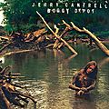 Jerry Cantrell: la <b>discographie</b>