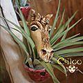 Fantasy-ciloo