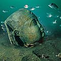 British Museum launches first major exhibition of underwater archaeology