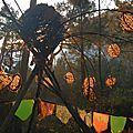 arbre aux oeufs 1 sylvart yurtao