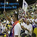 01 Les blu fox Montpellier