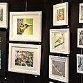 Expo avicole hoenheim