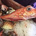 Soiree soupe de poissons 2017