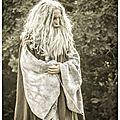 Le Tombeau de <b>Merlin</b> (A la Recherche de la légende d'Arthur et des Chevaliers de la Table Ronde)