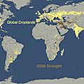 global croplands and 2008 drought