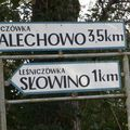 Slowino / Schlawin
