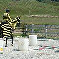 Jeux équestres manchots 2013 (213)
