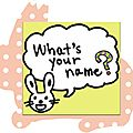 What's your name ? Book, cycles 1 et 2