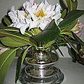 Vase en verre mercurisé