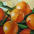 Clémentines | huile sur toile | 20 x 20 cm