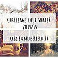 Challenge - cold winter 2014-2015
