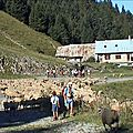 Traversée du <b>Roc</b> <b>d</b>'<b>Arguille</b> 1768 m en joëlettes – Chartreuse