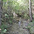 Commune : thorame basse cours d'eau : adou de la bâtie.