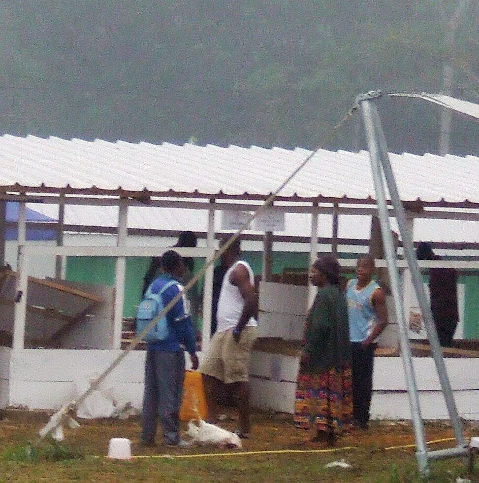 Grippe aviaire: un nouveau foyer éclate au Cameroun