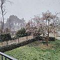 Il neige !