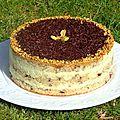 Gâteau à la crème fraîche, mousse chocolat blanc pistache et sirop de chocolat