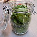menthe - - www.passionpotager.canalblog.com
