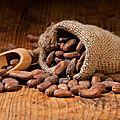 Le chocolat, un trésor de bienfaits pour la santé…