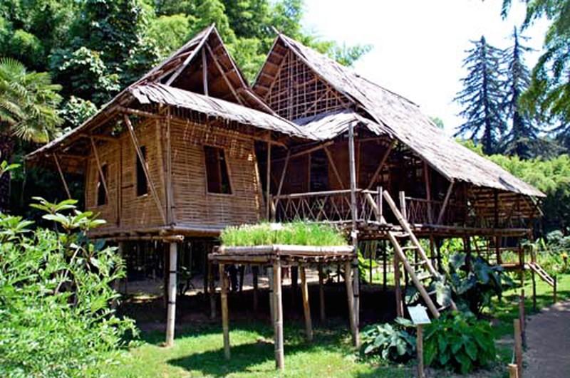 cabane bambou