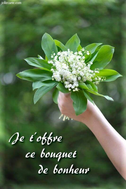 Brin de muguet le jardin par passion - Bouquet de muguet photo ...
