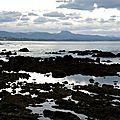 En marchant sur la digue de la plage de la milady à marée très basse... (64)