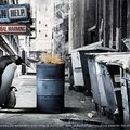 creativewwfcampaigns02