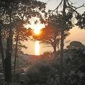 Montecristo sunset
