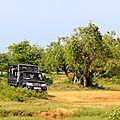 Parc national de yala sri lanka(5)