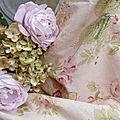 Autour des <b>roses</b>