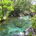 Xel-Ha: parc naturel