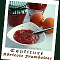Confiture abricots framboises (thermomix)